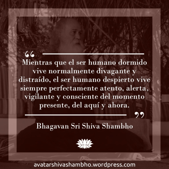 Bhagavan Sri Shiva Shambho Frases En Español V Shiva